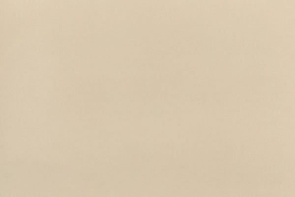 Alcantara Microfaser Beige P702